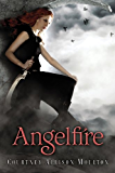 Angelfire (Angelfire Trilogy (Quality) Book 1)
