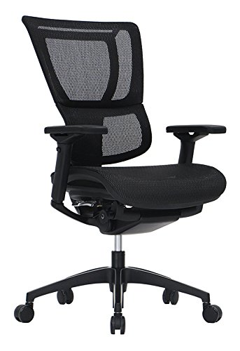 iOO Eurotech Office Ergonomic Chair Black Mesh and Black Frame (NO Head Rest) (Pinnacle Office Chair)