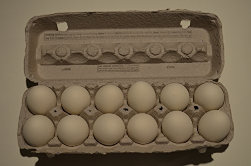 (Duncan's Poultry 1 Dozen Ceramic Eggs in a Grade A Large Egg Carton. (White))