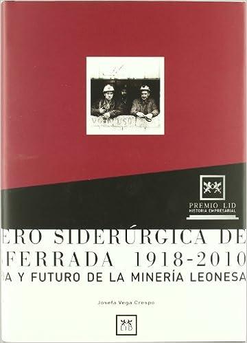 Minero Siderúrgica de Ponferrada 1918-2010.: Historia y ...