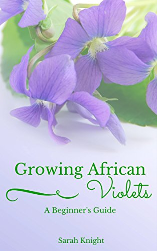 growing-african-violets-a-beginners-guide-learn-the-secrets-to-growing-beautiful-healthy-african-vio