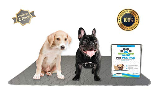 Buddy Pad Pet Training Pee Pads for Dogs, Crate/Kennel 30 in x 36 in Large Washable, Waterproof Protection, Absorbent, Non Slip Padding Silicone Grips Multi Floor, Reusable, Durable and Safe
