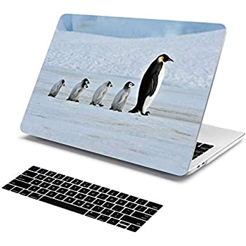 Amazon.com: Case for MacBook Pro 13