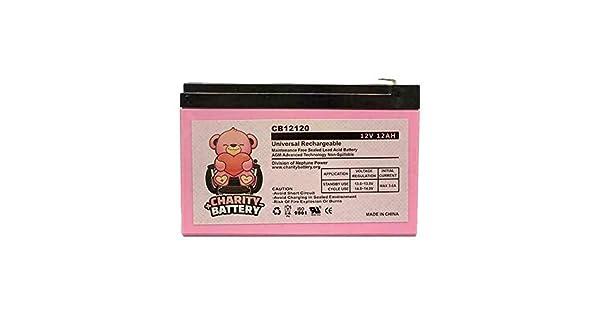 Amazon.com: Charity CB12120 - Batería de repuesto de ácido ...