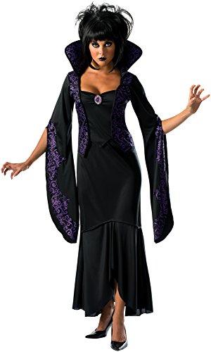 Mystical Sorceress Costume (Rubie's Costume Co Women's Mystical Maiden Costume, Black, Small)