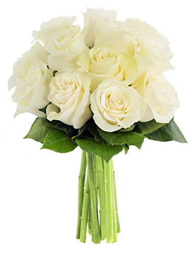 KaBloom Bouquet of 12 Fresh Cut White Roses (Long Stemmed) without Vase (Stemmed Bouquet Long White Rose)