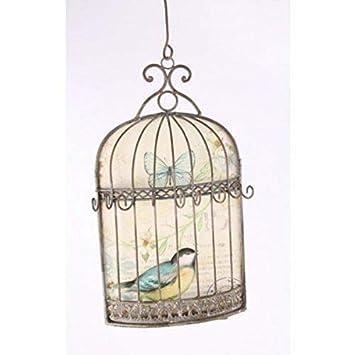 Medio 27 cm de la pared en una jaula de pájaro adornados plateado ...