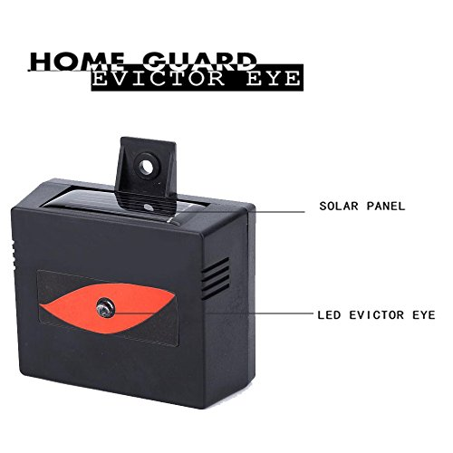 MTL Evictor Eye Solar Powered Animal Repeller for Waterproof, Deterrent Light Nocturnal Animals - 2...