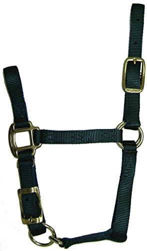Hamilton 3/4-Inch Adjustable Quality Horse Halter, Foal or Average Miniature Horse, Dark Green