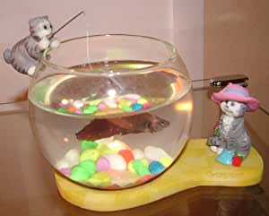 Fun fish bowl lady cat w the hat pet supplies for Fish bowl amazon