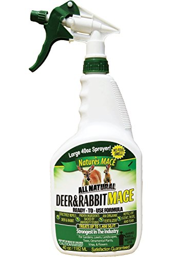 Nature's Mace Deer and Rabbit Repellent 40oz Ready-to-Use Spray (Best Way To Keep Grass Out Of Flower Beds)