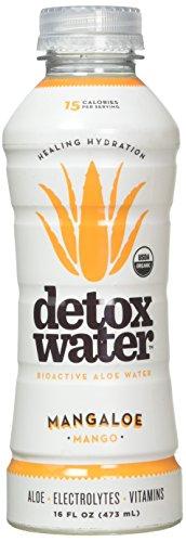 - Detoxwater - Bioactive Aloe Water Mangaloe - 16 oz.