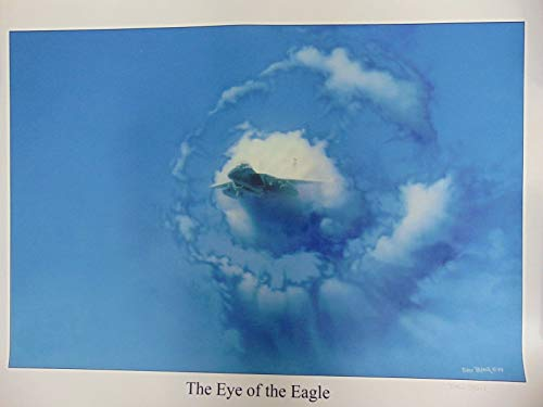 (Sold Out! Eye of The Eagle (F-15) Drew Blair Hand Signed 22X28 Print)