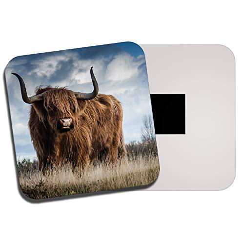 Destination Vinyl Ltd Fluffy Highland Cow Fridge Magnet - Cattle Scotland Scottish Hairy Gift #13165 (Scotland Fridge Magnet)