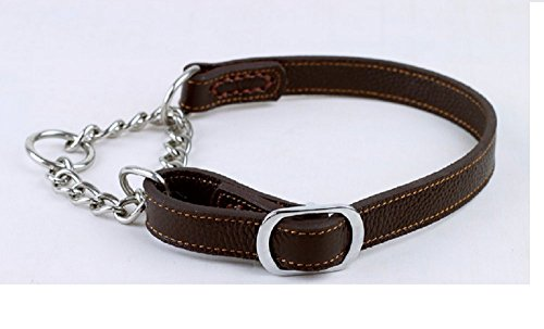 Wellbro Luxury Martingale Genuine Leather Dog Collar With Chain Half-Check, (Martingale Leather Harness)
