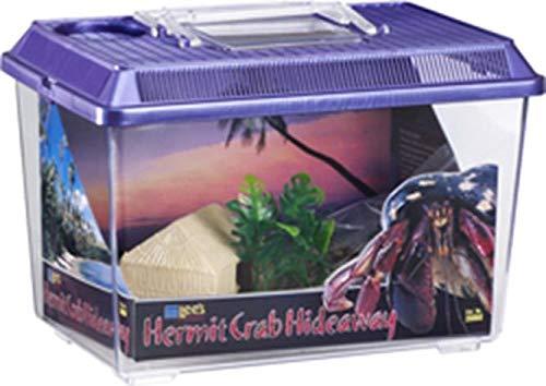 (Lee's Hermit Crab Hideaway Kit, Medium, Colors May Vary)