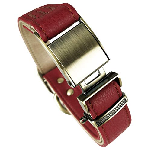 Fourhorse Basic Classic Luxury Padded Leather Dog Collar,The Seatbelt Buckle,for Large Medium Small Pets (L, red)