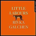 Little Labours | Rivka Galchen