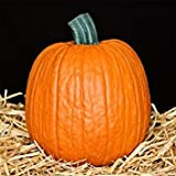 Mr. Light Joe Funkin - Size 8 inches x 8 inches - Carvable Artificial Pumpkin
