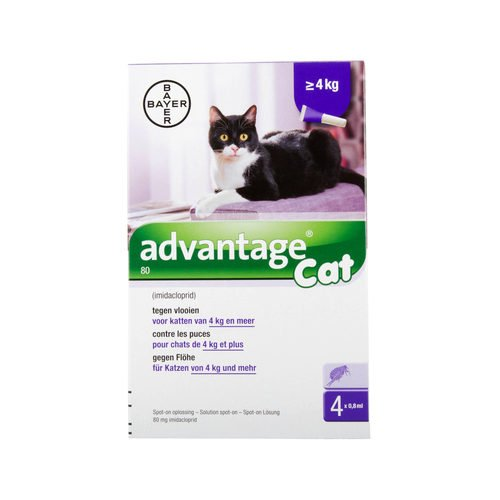 Advantage 80 Chat > 4 kg - 4 pipettes