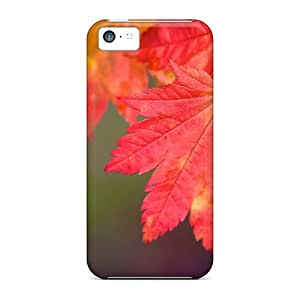 NikRun LccCj2973rREzr Case Cover Iphone 5c Protective Case Rainbow Autumn Autumn Landscape