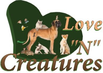"""Love """"N"""" Creatures - Interactive LED Pointer Cat Toys"""