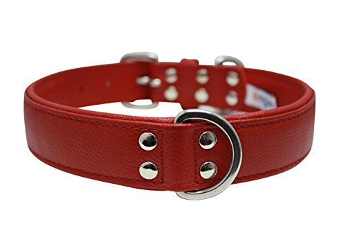"""Leather Dog Collar, Padded, Double Ply, 24"""" x 1.25"""", Red, Le"""