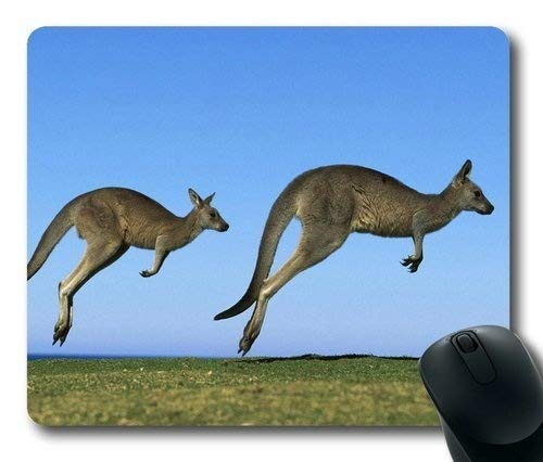 Kangaroos- Rectangle Mouse pad 002 for sale  Delivered anywhere in Canada