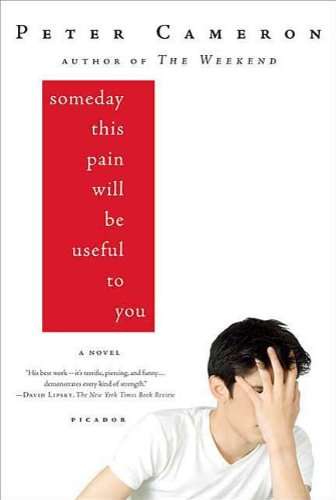 Amazon someday this pain will be useful to you a novel ebook someday this pain will be useful to you a novel by cameron peter fandeluxe Image collections