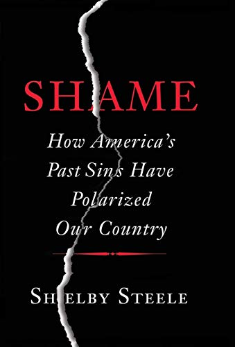 (Shame: How America's Past Sins Have Polarized Our Country)