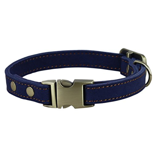 chede Luxury Real Leather Dog Collar- Handmade For Small Dog Breeds With The Finest Genuine Leather-Best Quality Collar That Is Stylish,Soft Strong And Comfortable-Blue Dog Collar