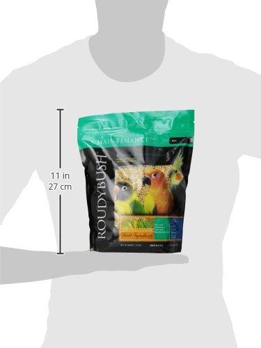 Roudybush Daily Maintenance Bird Food, Mini, 44-Ounce by RoudyBush (Image #3)