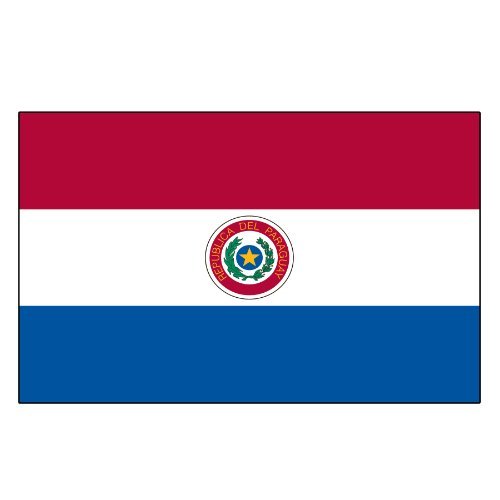 US Flag Store Paraguay Printed Polyester Flag, 3 by 5-Feet