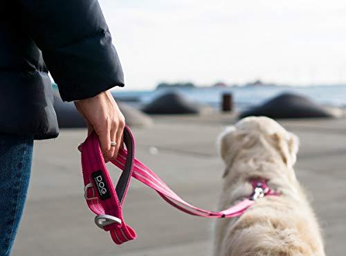 DOG Copenhagen Urban Freestyle Leash Mocca Leine FL-BL Talla S ...