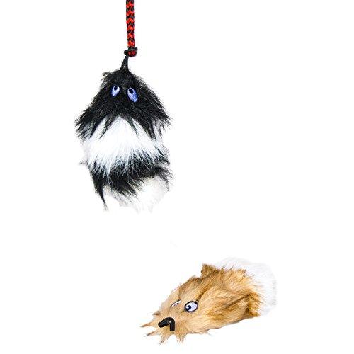 Buy dog toys on amazon