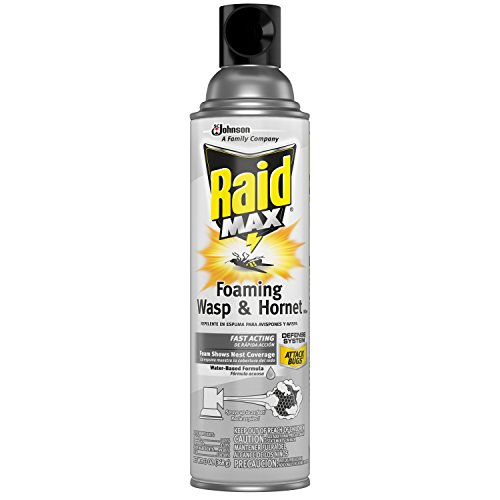 Raid Max Foaming Wasp & Hornet Killer, 13 OZ (Pack - 1)