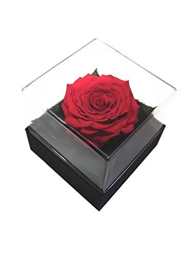 Preserved Rose Gift Box color (Eco Flower)