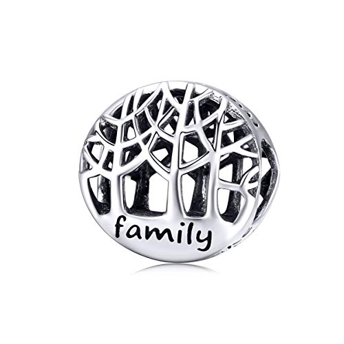 (WOSTU Good Luck Charms 925 Sterling Silver Tree of Life Charms for Charm Bracelet Necklace Family Bead Charms)