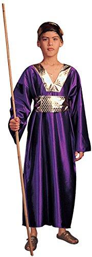 Wiseman (Purple) - Large Child Costume