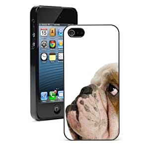 Apple iPhone 4 4S 4G Black 4B429 Hard Back Case Cover Color Cute English Bulldog Face Side View