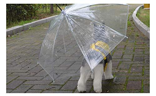 Huasen Chubasquero para Mascotas Paraguas Transparente Mascota con Correa de Perro Plegable Impermeable para Invierno