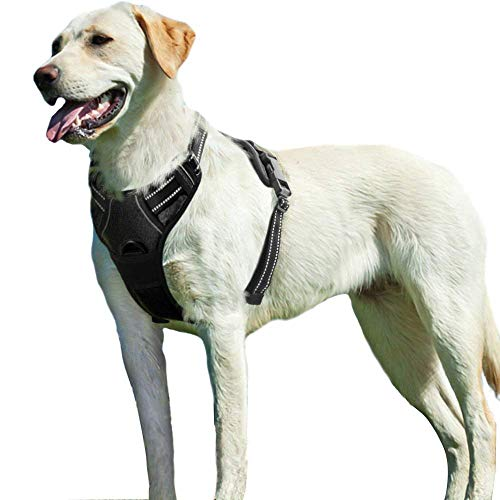 Eagloo Dog Harness No Pull, Walking Pet Harness with 2 Metal Rings and Handle Adjustable Reflective Breathable Oxford Soft Vest Easy Control Front Clip Harness Outdoor for Large Dogs Black