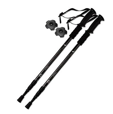 TheFitLife Nordic Walking mountaineering Anti Shock Hiking Trekking Walking Trail Poles, 2-pack, Folding Collapsible Alpenstocks, ultralight for travel mountaineering