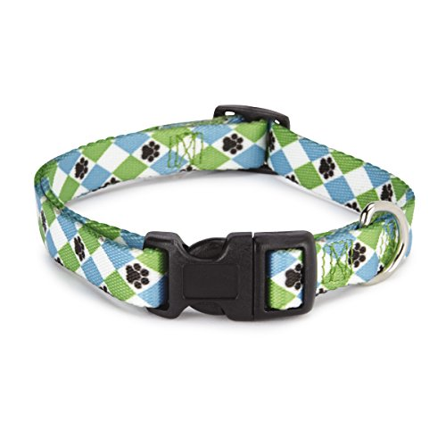 "Casual Canine Nylon Pooch Patterns Dog Collar, Fits Necks 10"" to 16"", Blue Argyle"