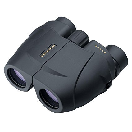 Leupold Rogue Compact Porro Prism Binocular, 10x25mm, Black by Leupold