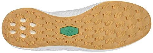 adidas Ace Tango 17.1 In, para los Zapatos de Entrenamiento de Fútbol para Hombre Blanco (Ftwbla/gritra/verbas)