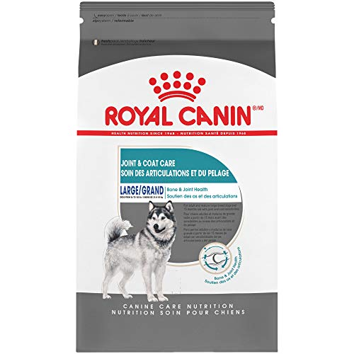 Royal Canin Large Breed Joint Coat Care Dry Dog Food (30 lb)