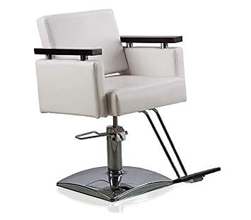 Amazon.com: Danyel Beauty Professonal Silla de peluquería ...