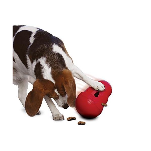 KONG Wobbler Dog Toy 2