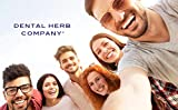 Dental Herb Company - Under the Gums Irrigant